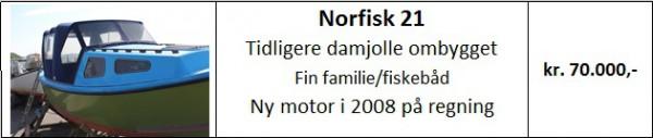 Norfisk 21